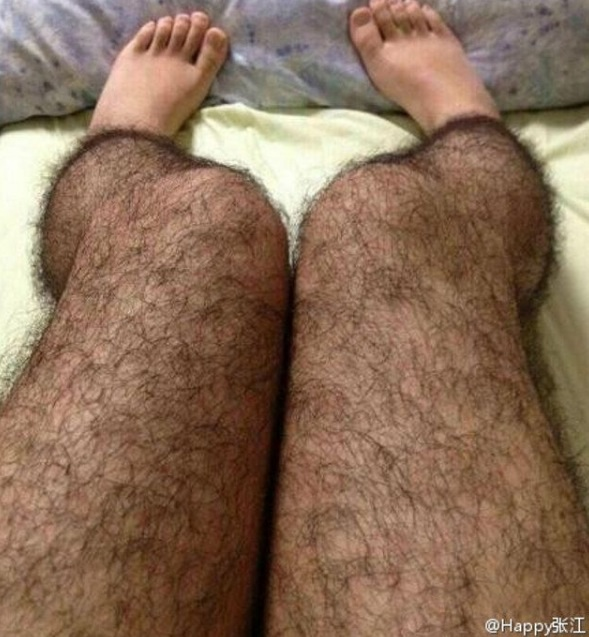 Hairy leg tights